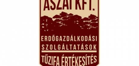 Aszai.hu logó készítés