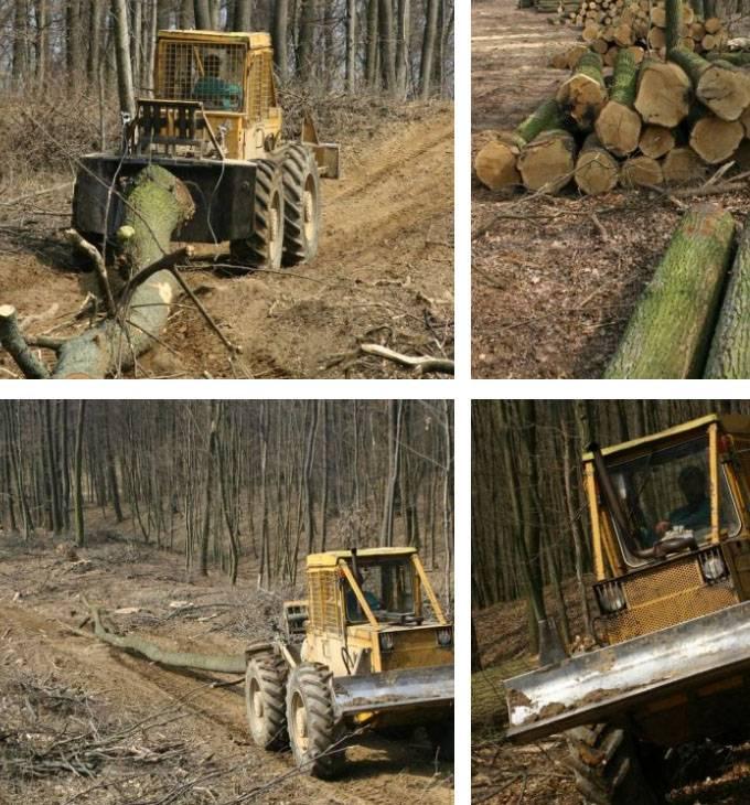 Aszai.hu - Erdőgazdálkodás, tűzifa értékesítési reszponzív weboldal készítés