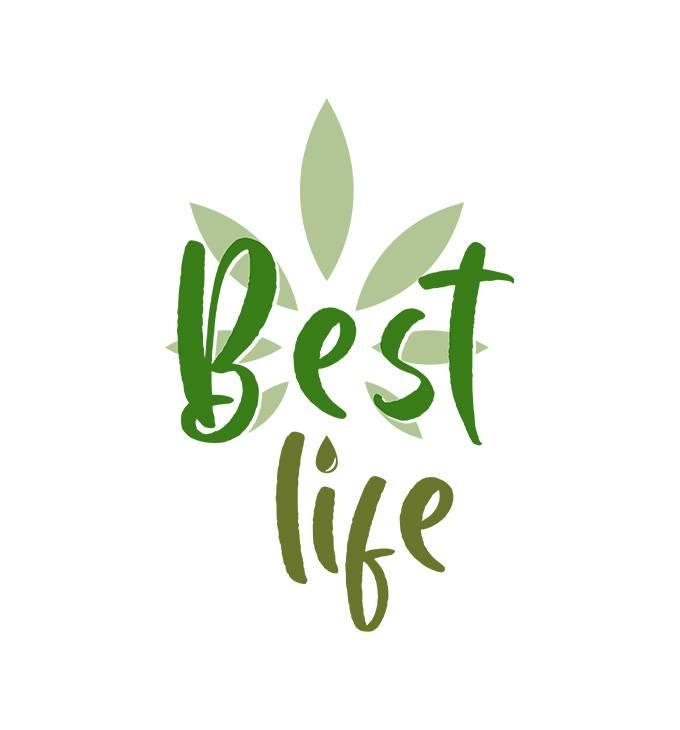 Best-life.hu - logó készítés
