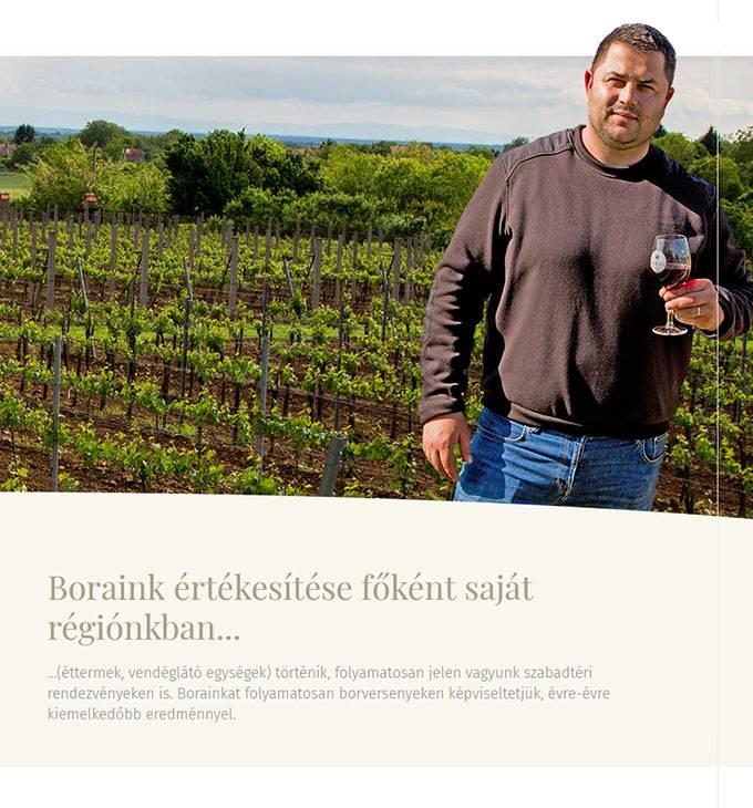 Ho-bor.hu - Hóbor Pince Nagypeterd - Reszponzív honlapkészítés