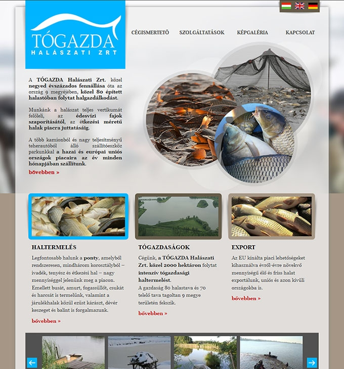togazda.hu céges weboldal elkészítése